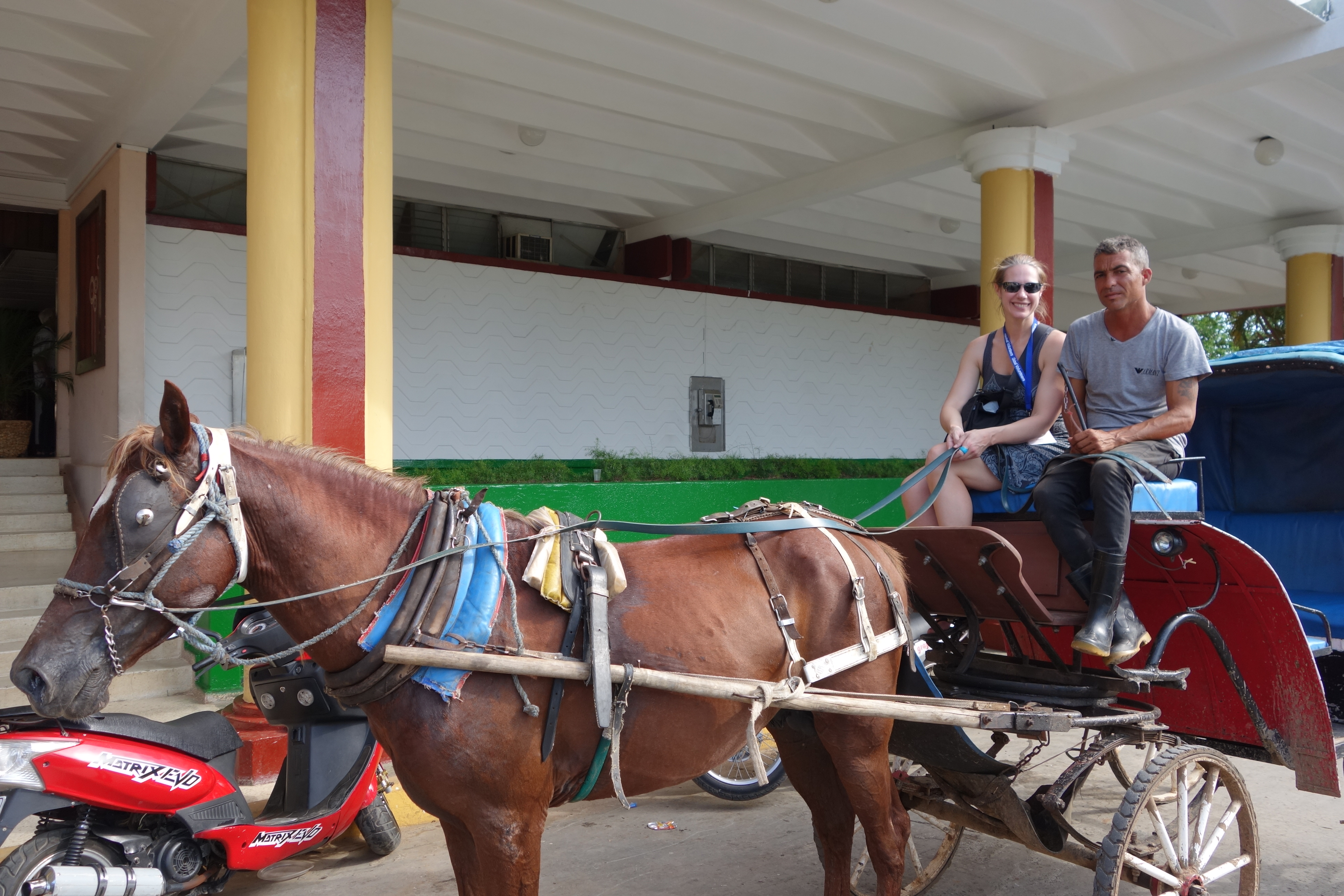 05.22 Horse and Buggie (5)